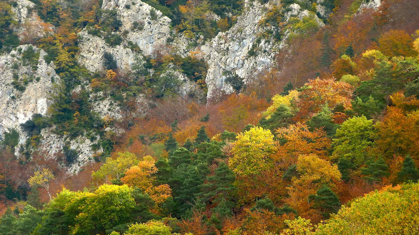 Autumn in Catalonia