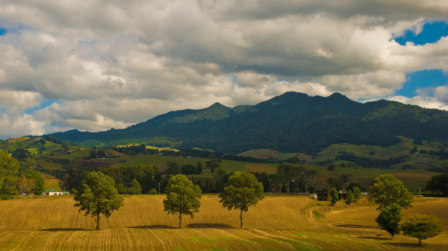 Mt Pirongia, Waikato, New Zealand
