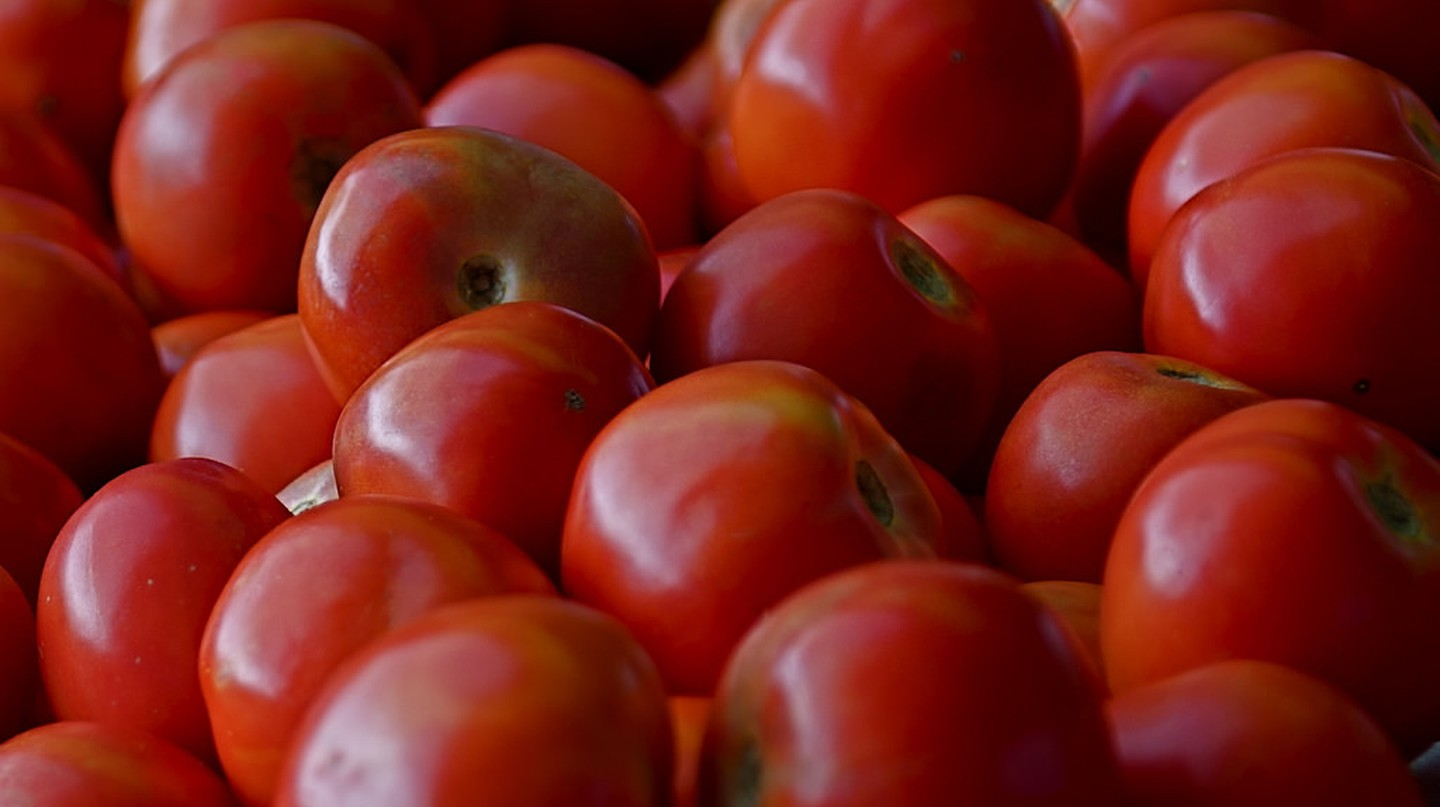 Tomatoes are the star of the show at Syzran's festival I © Geoff Penaluna / Flickr