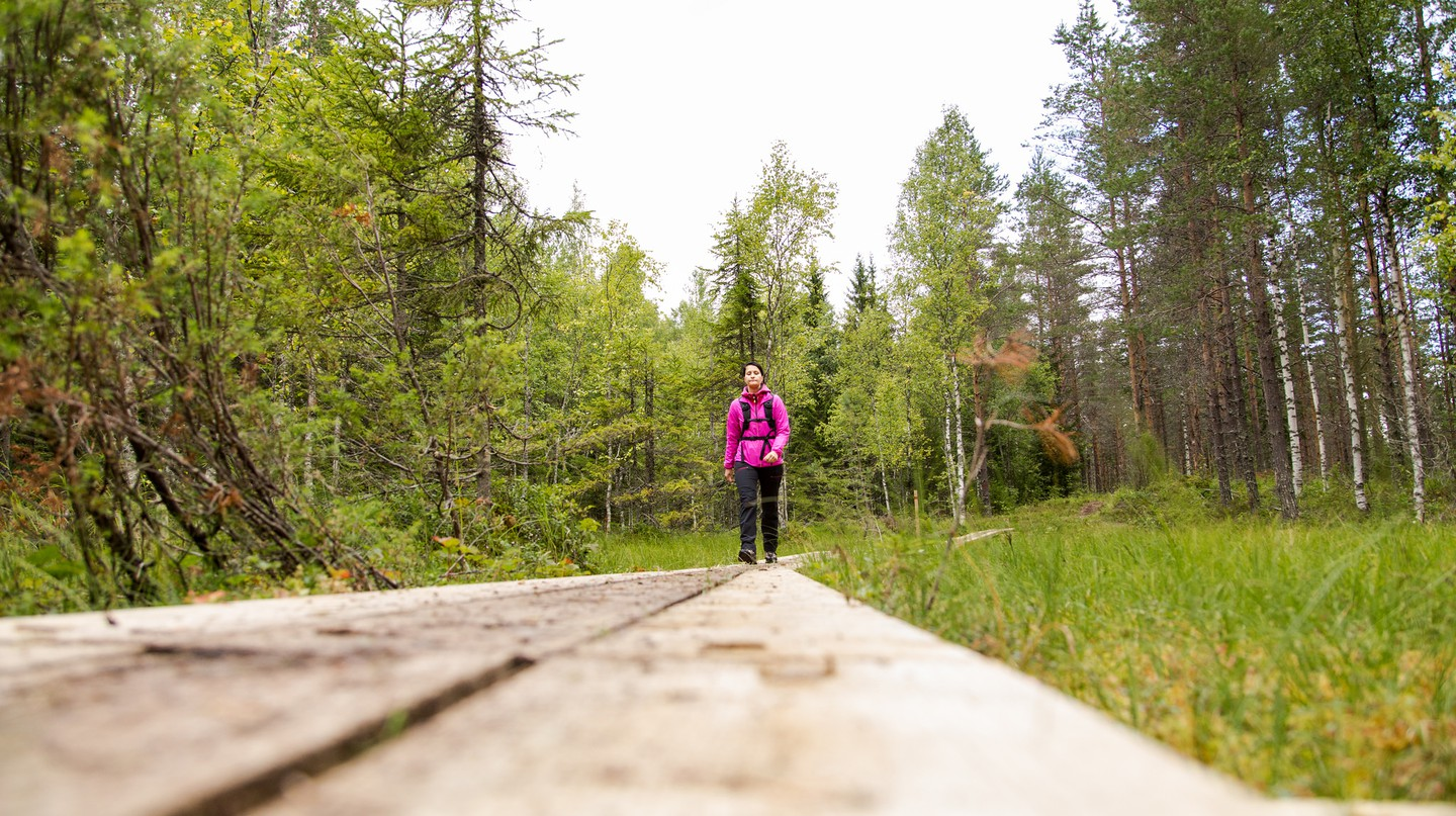 Hiking a forest trail in Finland / Visit Lakeland / Flickr