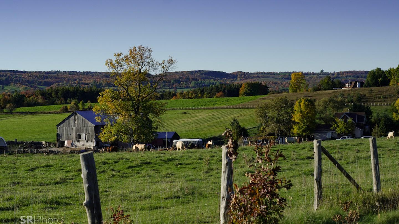 Farmland in Southern Ontario | © Sean Rosairo/ Flickr