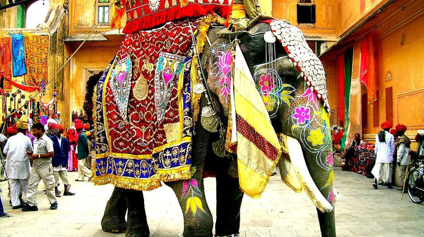 Decorated Indian Elephant © Faraz Usmani | Wikimedia.org