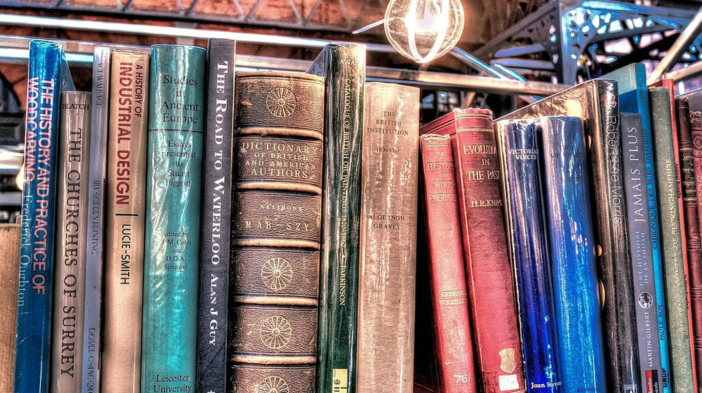 books on the shelf of a bookstore / (c) Pixabay