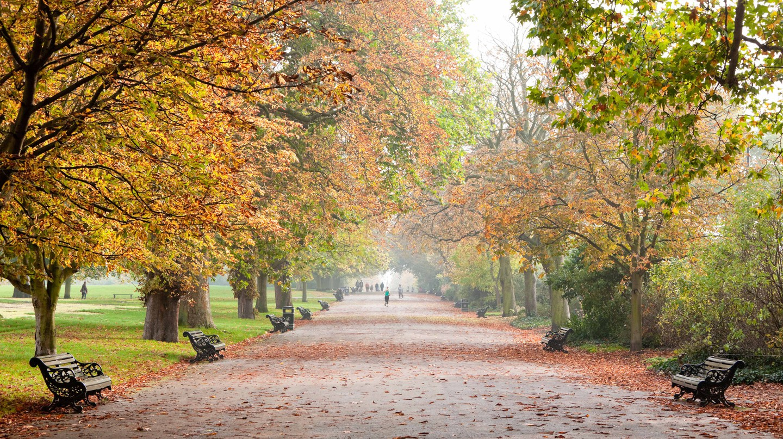 Regent's Park in autumn, London, England.
