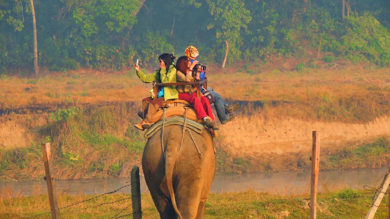 A seasonal guide to India's best cities    © Devaiah Mallangada Kalaiah / Unsplash