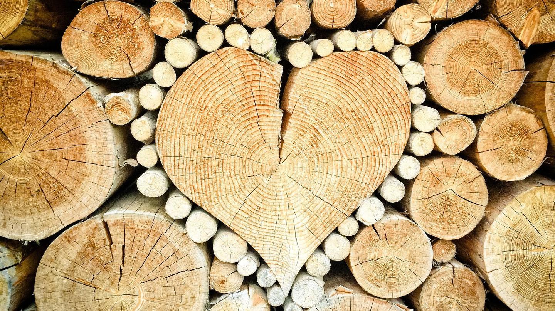 Heart | © TheUjulala/Pixabay