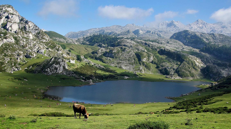 Go hiking around the Lakes of Covadonga in Asturias