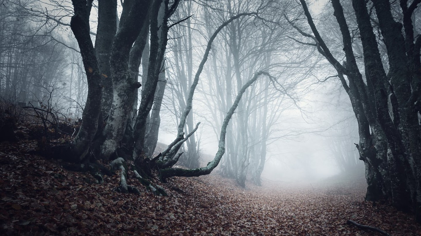 Spooky travels | © Denis Belitsky / Shutterstock