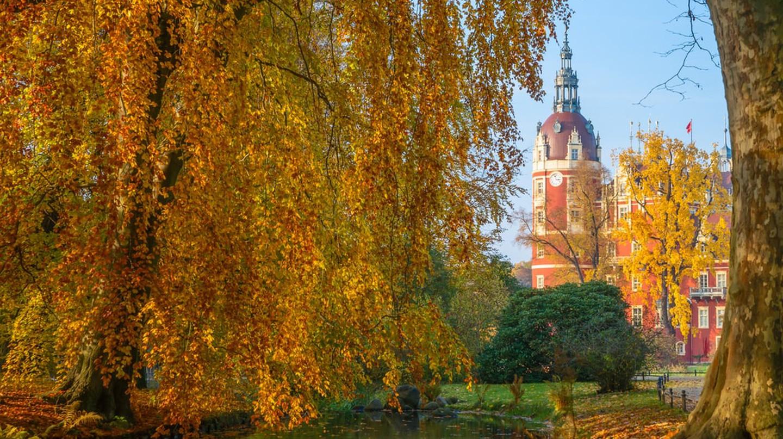 © Ugis Riba / Shutterstock