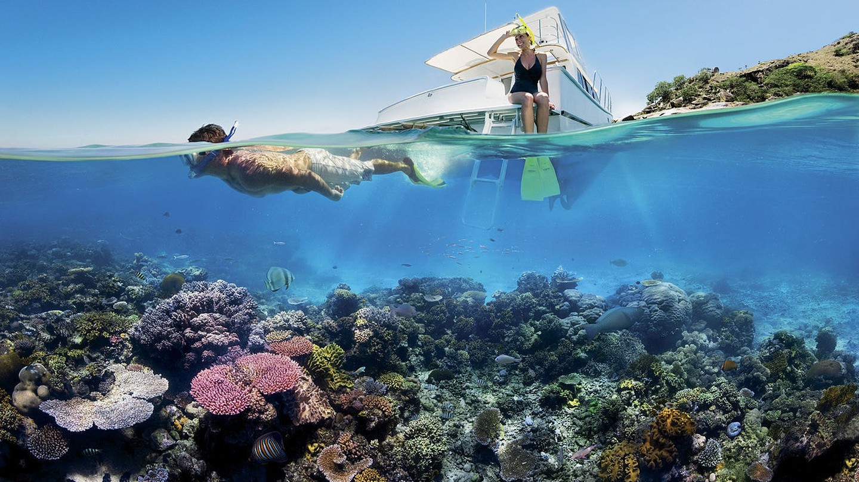 https://commons.wikimedia.org/wiki/File:Reef_Snorkelling_on_the_Great_Barrier_Reef.jpg