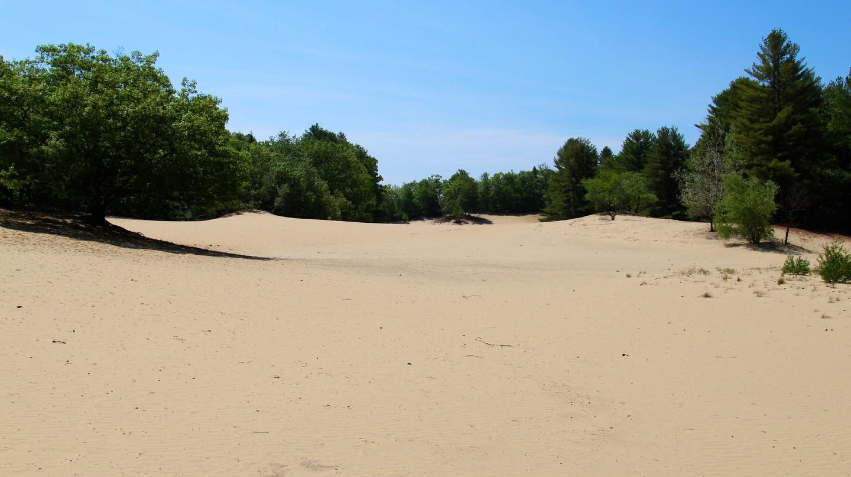 Desert of Maine   © David Fulmer / Flickr