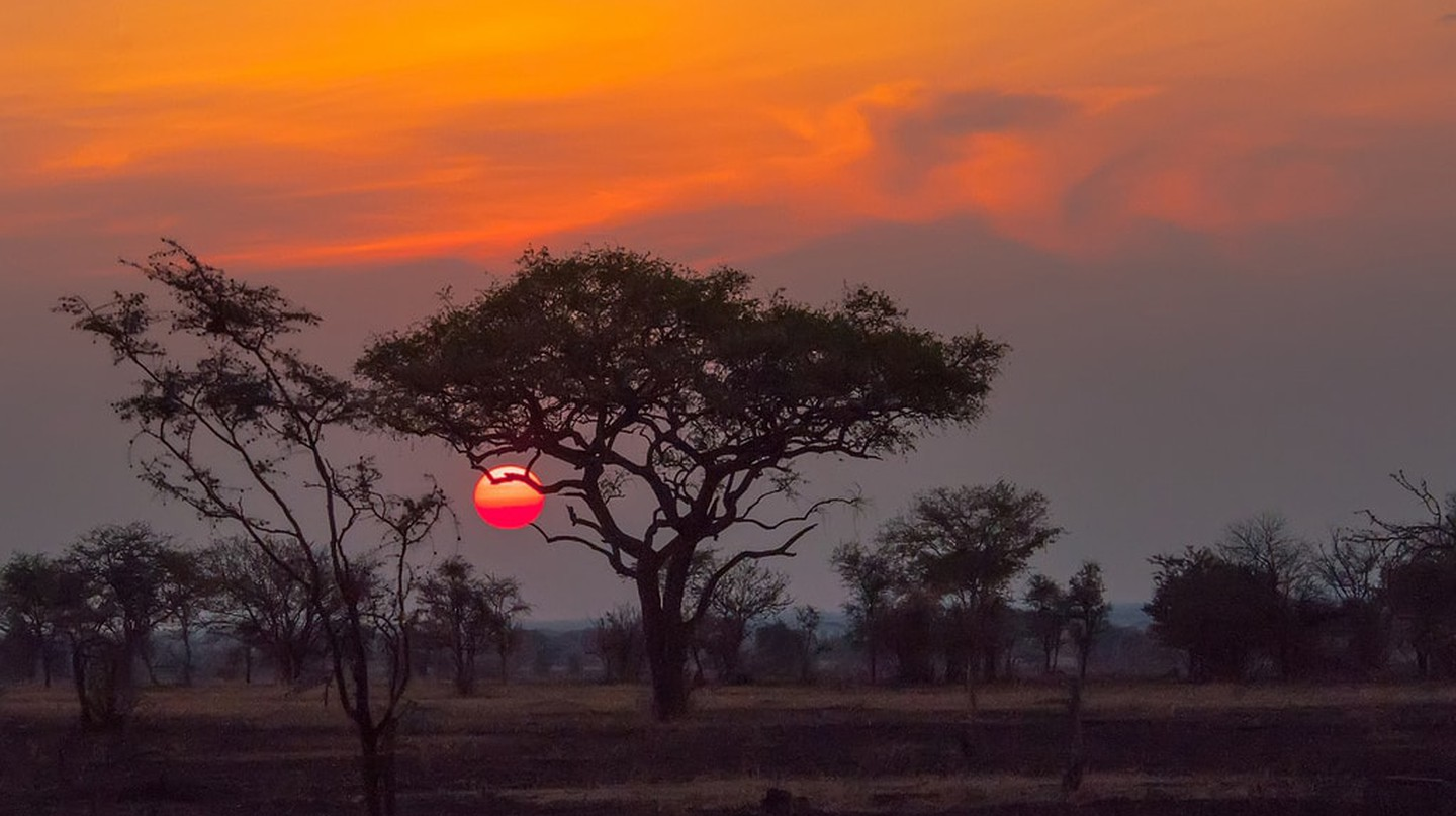 Sunset over the Serengeti | © Anita Ritenour/Flickr