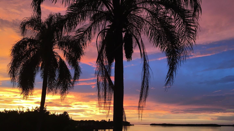 Tampa Bay at sunset | © pixabay