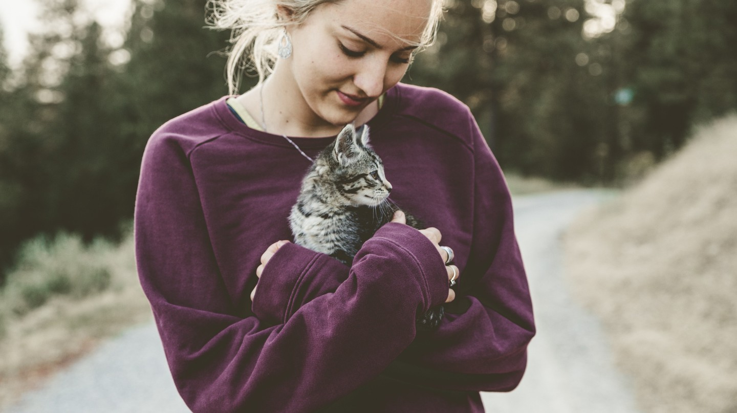 Hugging kitties is a good first step |© Japheth Mast / Unsplash