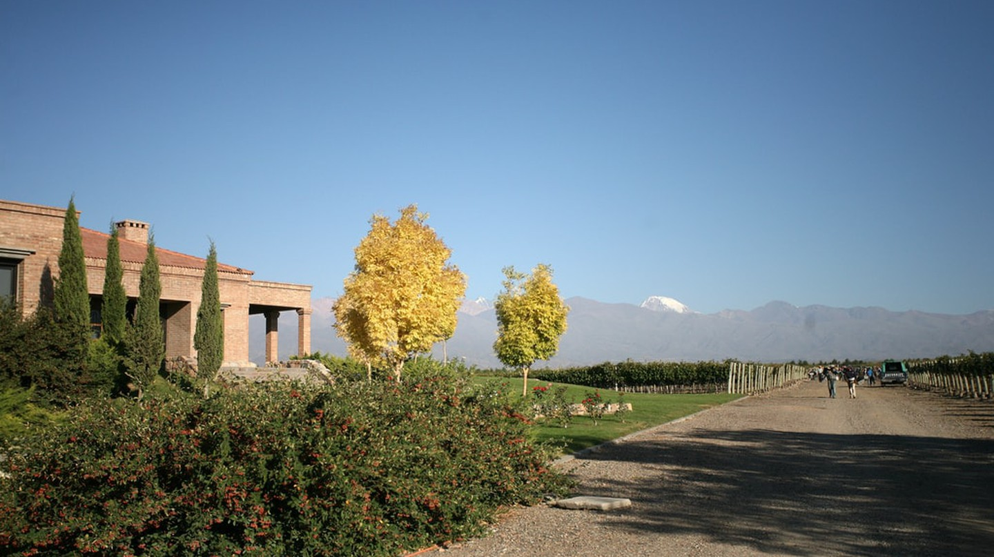 Vineyards, the Andes, what more could you want from Mendoza?! | © Mark Surman/Flickr
