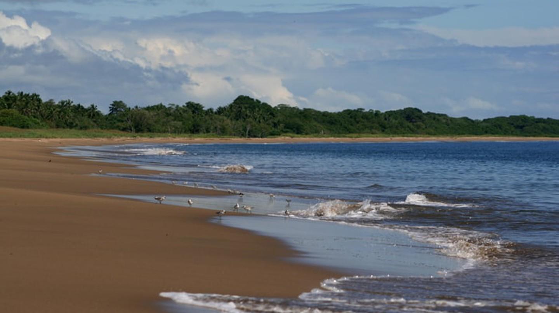 Playa El Arenal, Panama | © Pesasí consultant / WikiCommons