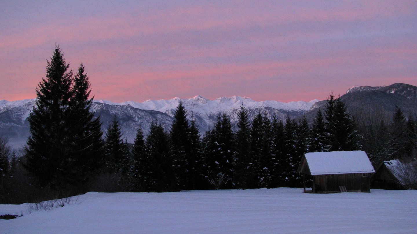 Pokljuka Plateau in the Winter | © breki74/WikiCommons