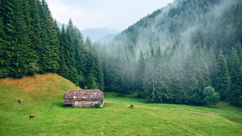 Romanian landscape | © Catalin Serban / Unsplash