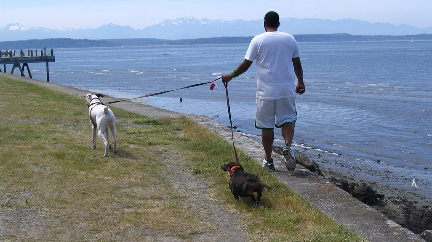 Stroll Along Alki Beach | © D Coetzee / Flickr