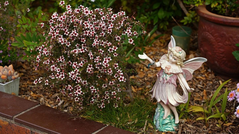 Fairy tale in my garden © Tatters/Flickr