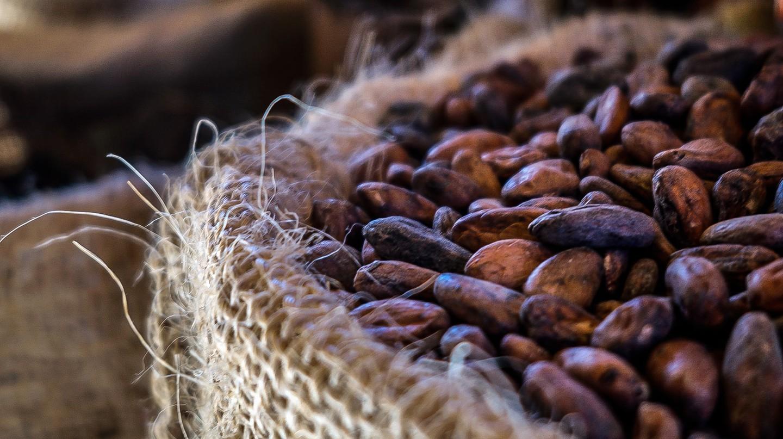 Cacao   © Giulian Frisoni / Flickr
