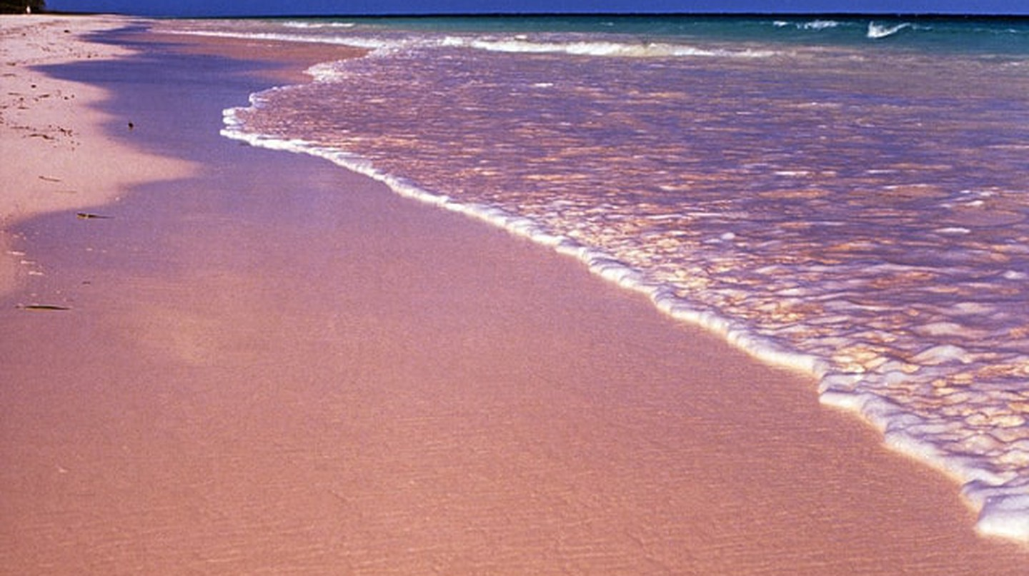 Pink Sand Beach, Harbour Island, the Bahamas | © Rüdiger Stehn/Flickr
