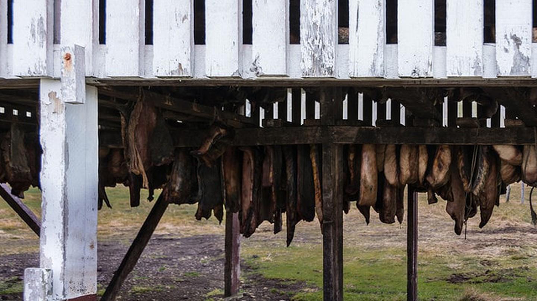 Fermented shark   © Austin Matherne/Flickr
