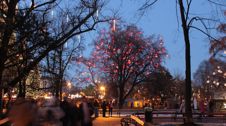 Vienna at Christmas   © Sandy Kirchlechner / Flickr