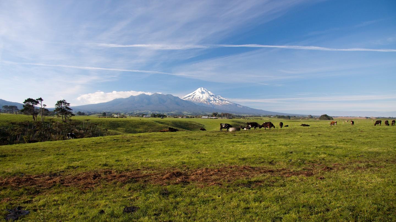 A dairy farm in Taranaki, New Zealand | © Dave Young/Flickr