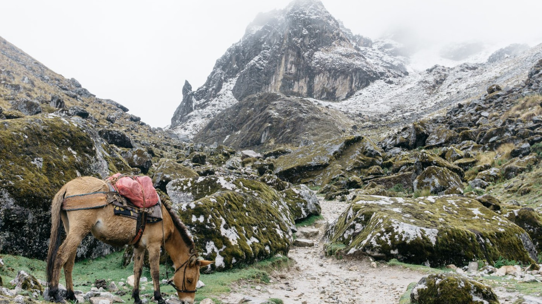 A view along the Salkantay Trail