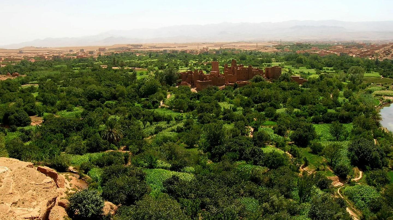 Kalaat M'Gouna, Morocco |©Lluc Ulldemolins/WikiCommons