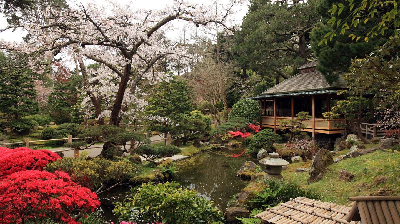 Japanese Tea Garden   © Caroline Culler / WikiCommons