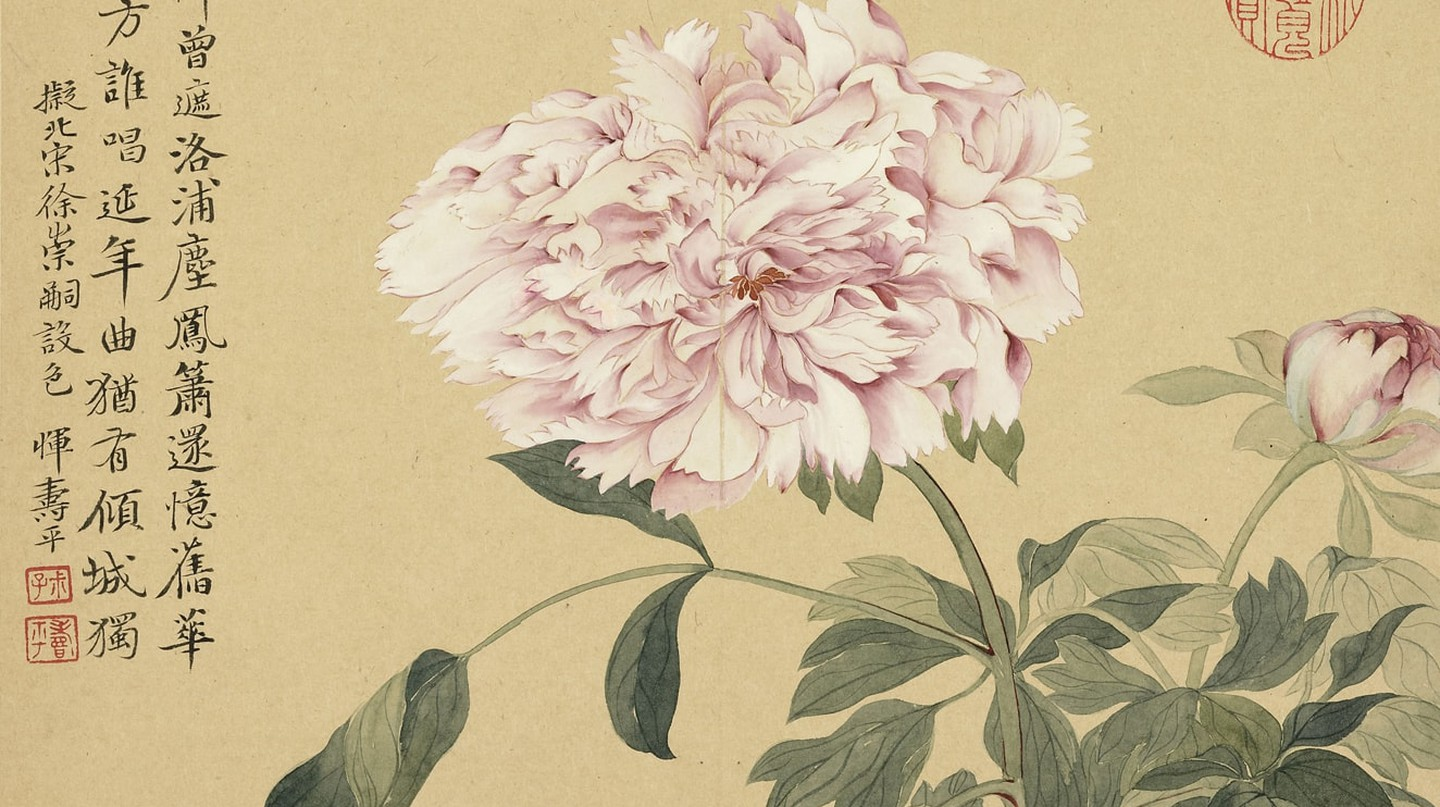 """Peonies"" by Yun Shouping (1633–1690), Qing Dynasty-era painting, via Wikimedia Commons"