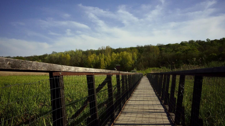 Comana Natural Park   © J Stimp / Flickr