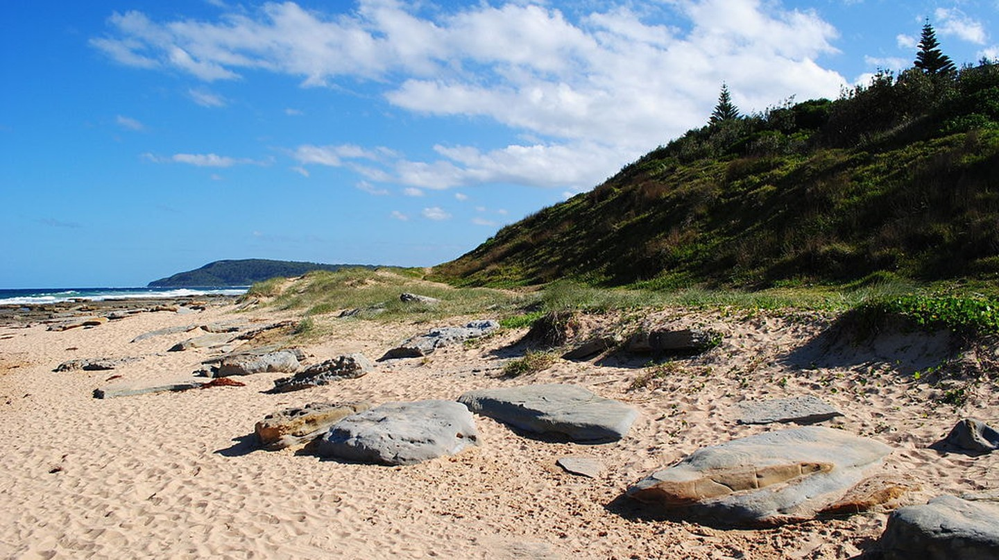 The Best Beaches on Australia's Central Coast