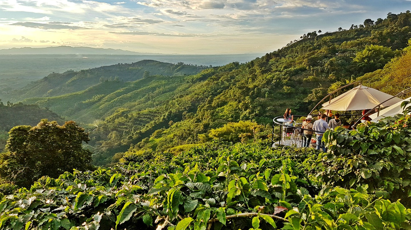 Buenavista, Colombia: the best coffee destination for 2018 | © Chris Bell / The Culture Trip