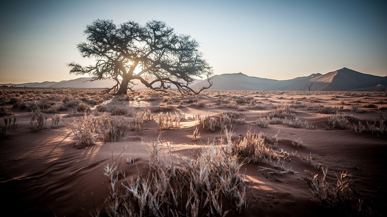 Namibia   © wiggijo / Pixabay