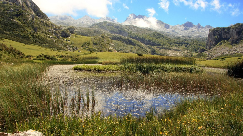 Green Spain, Asturias | © MaxPixel
