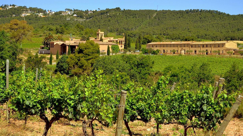 wine village, Spain | © Angela Llop / Flickr