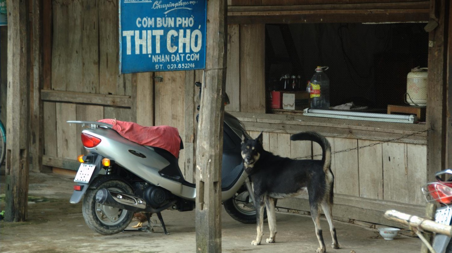Thịt chó means 'dog meat' | © Nomad Tales/Flickr
