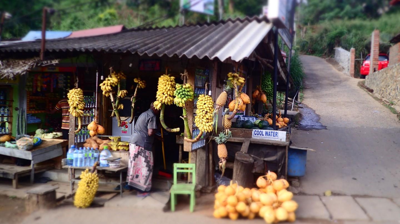 Fresh coconuts in Ella © SarahTz / Flickr