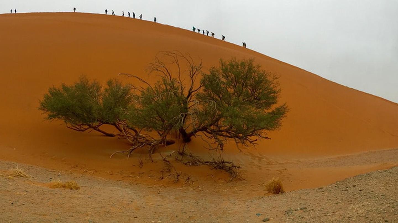Dune 45, Namibia | © Sonse / Flickr