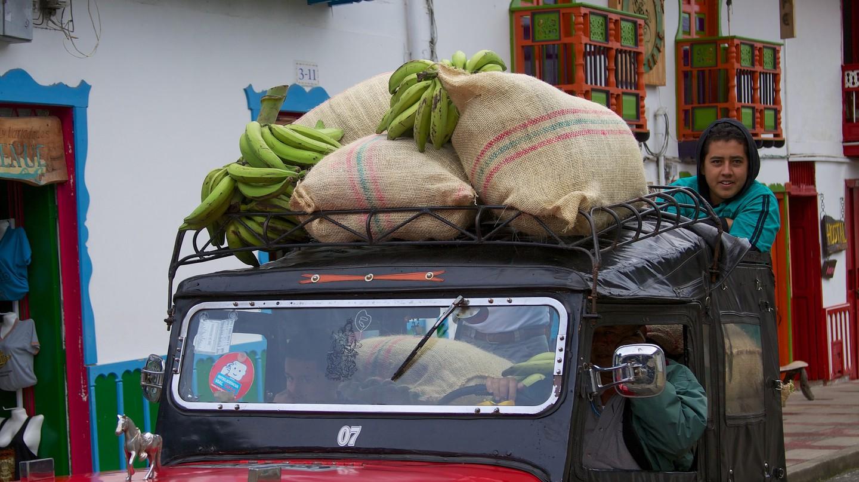 Colombian Coffee Region | © McKay Savage / Flickr