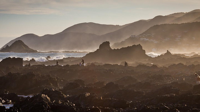 Houghton Bay, Wellington | © Dan Kunz / Flickr