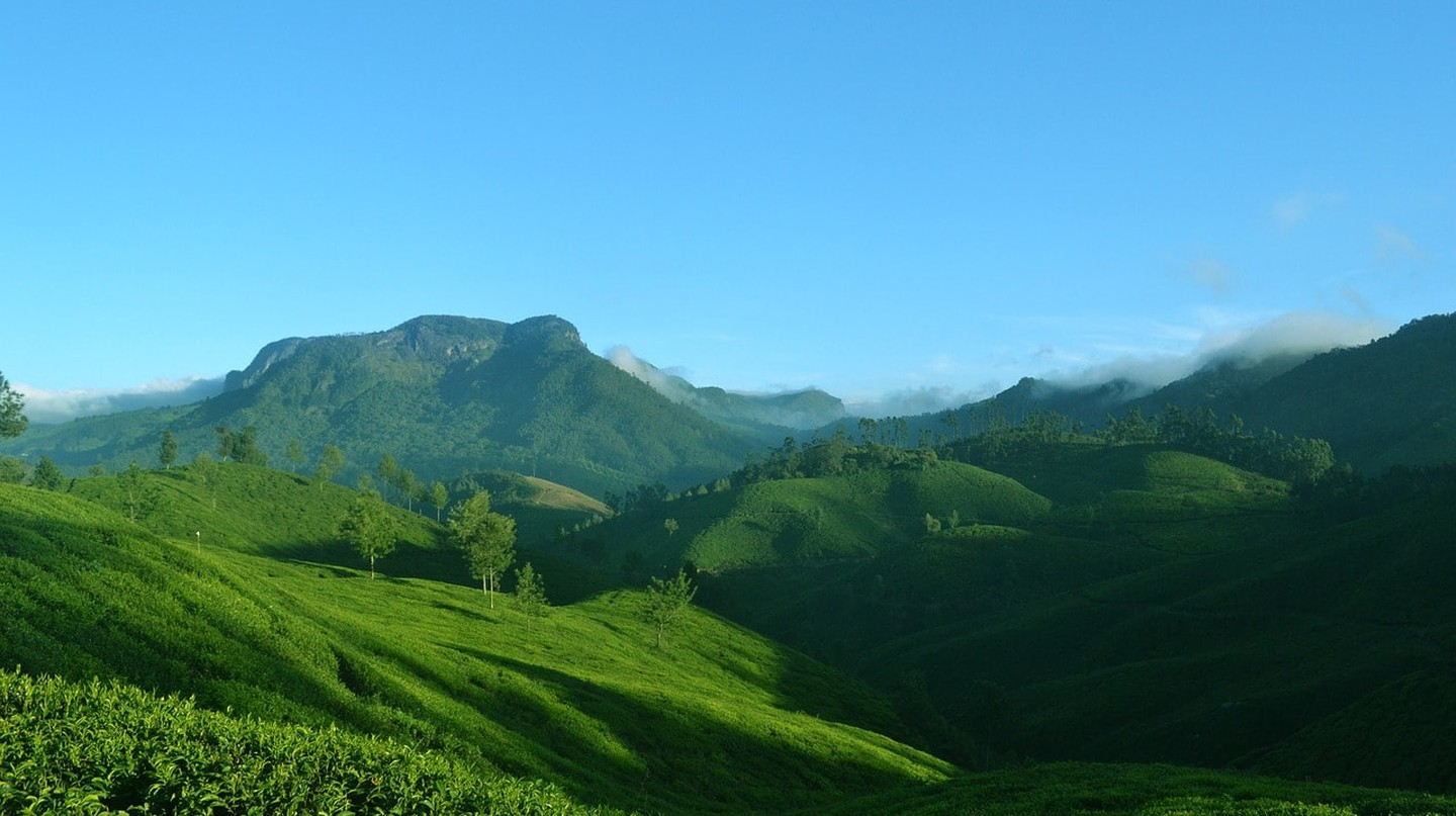 Munnar is a hill station in Kerala that is known for its tea-estates and scenic beauty |