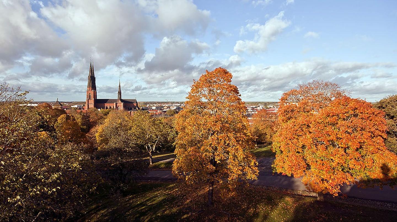 Uppsala | © Wikimedia