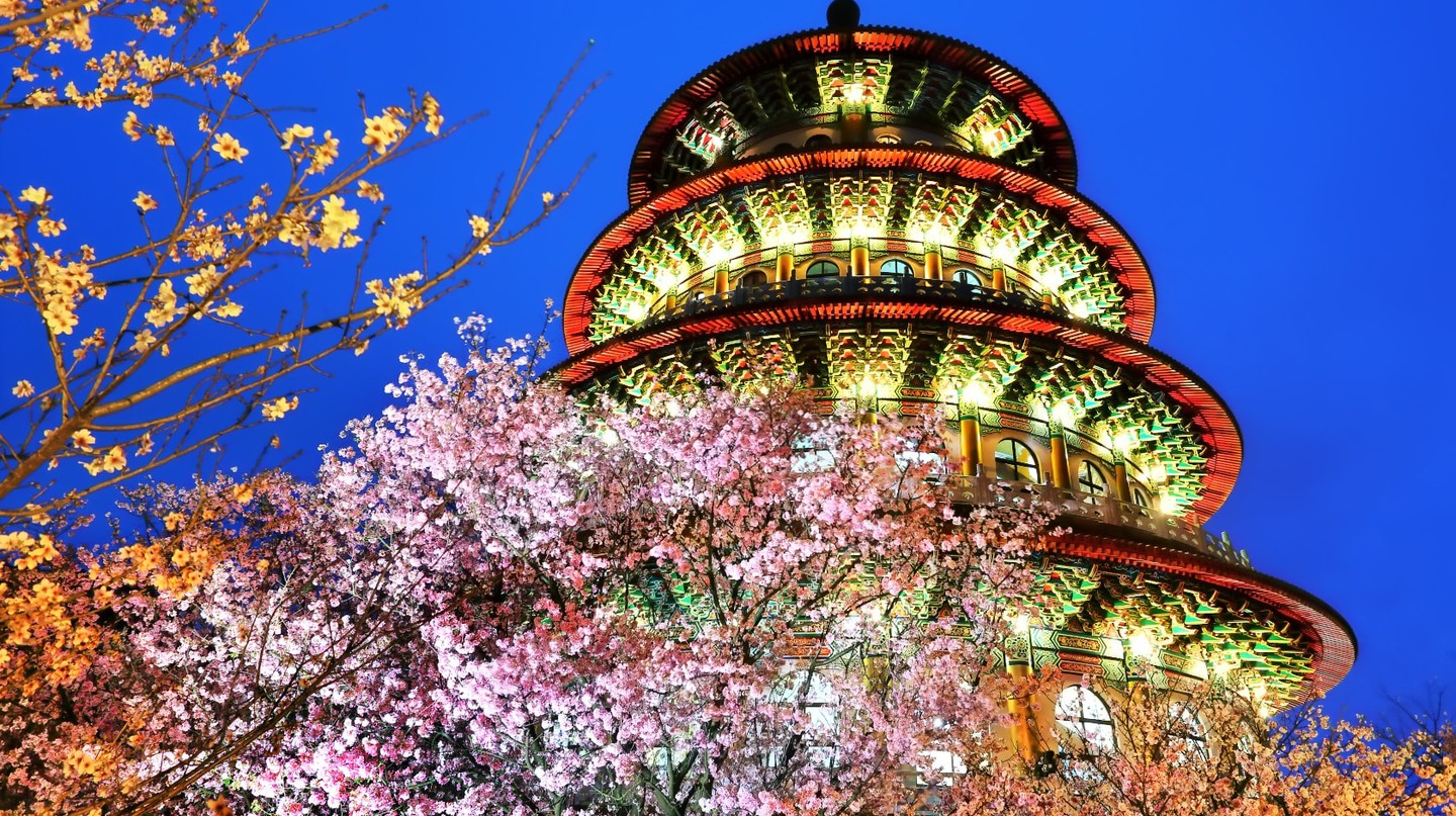 The cherry blossoms at Wuji Tianyuan Temple   © 攝影家9號 / Flickr