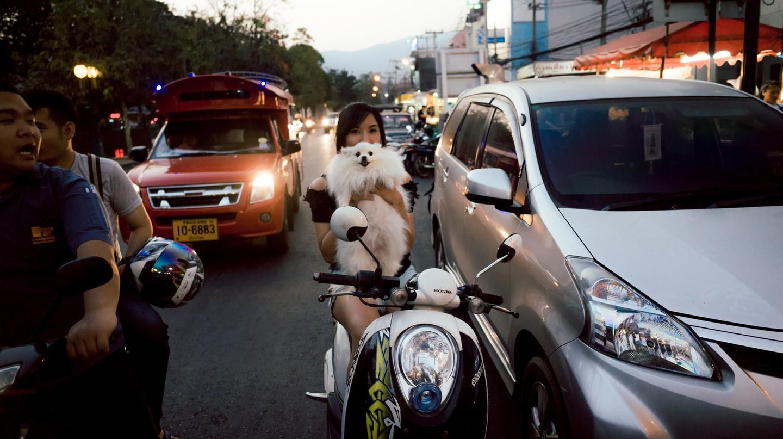 Trendy Chiang Mai | © Tony/Flickr