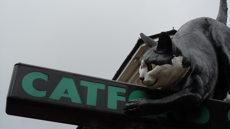 Catford Cat | © Kevan/Flickr