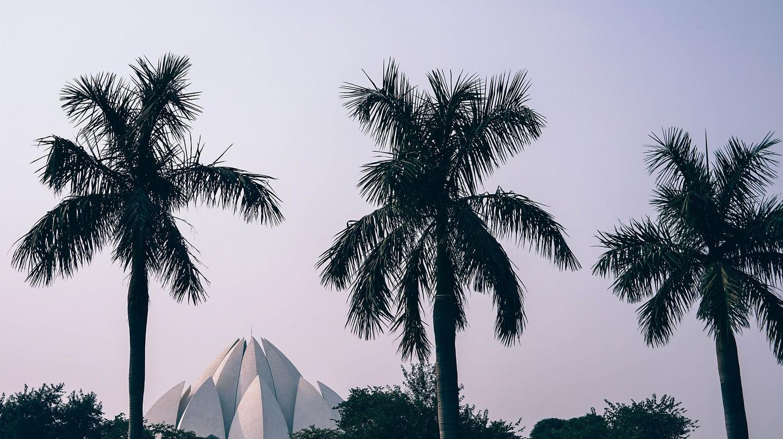 Lotus Temple, New Delhi | © Pexels / Pixabay